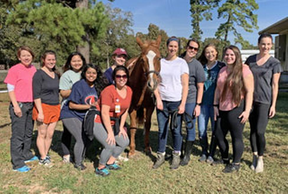 Dr. Sandy Branson's community/public health nursing clinical group saddle up with SIRE. (Photo by Audrey Bratton)